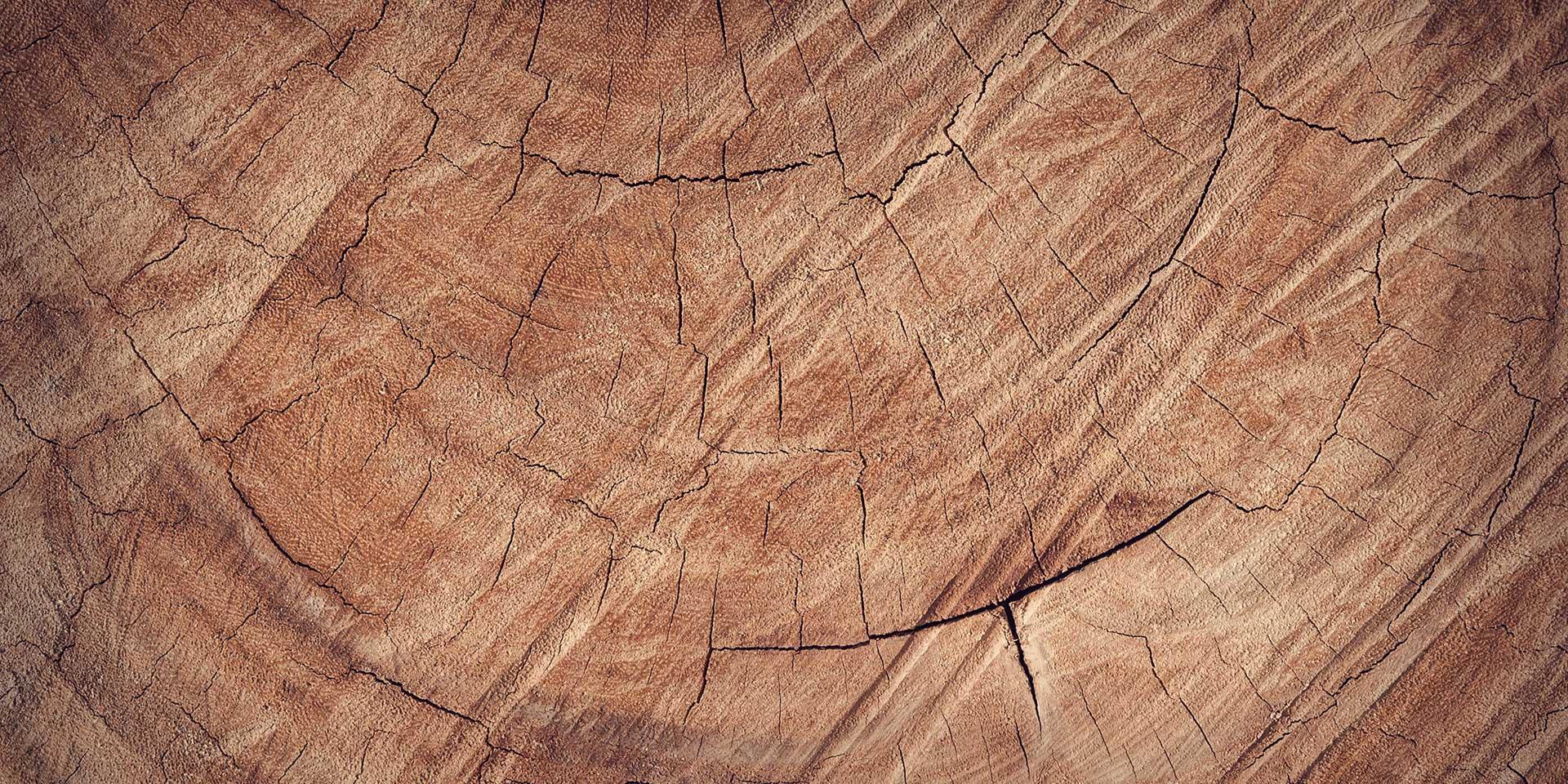 Legno Online Su Misura home paolini - paolini legnami